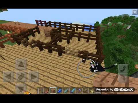 White tiger Minecraft video