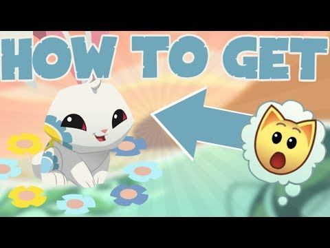 HOW TO GET A SPRING BUNNY ON ANIMAL JAM!