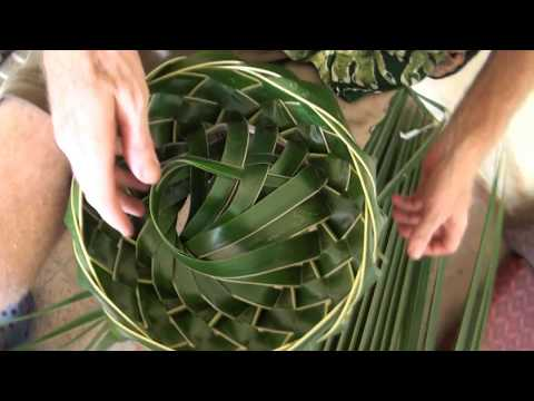 How to make the Coconut Leaf Bowl / Basket! By Kris Martin