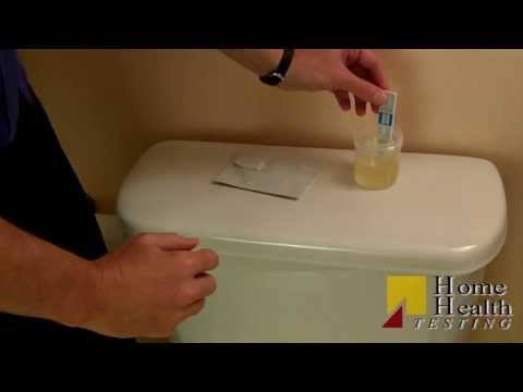 How to take a Marijuana Drug Test | Urine Drug Test