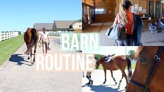 Barn Routine  Raws  Equestrian Prep