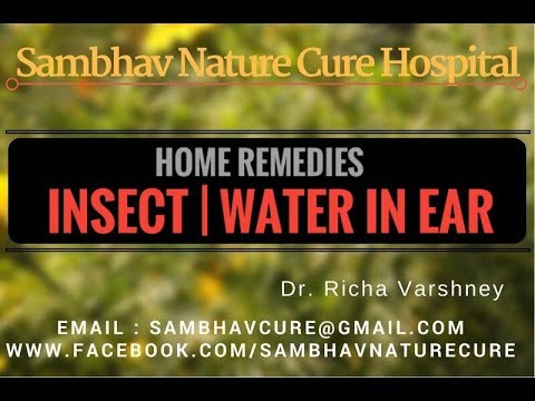 Insect| Bug | Earwig| Water in ear- Home Remedies Acupressure | Acupuncture Treatment Hindi Video