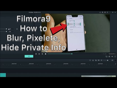 Filmora9: How to Blur/Pixelete/Hide Personal info, Passwords, Emails, License Plates, Objects etc