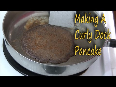 Wild Food Cooking - How to Make A Curly Dock Pancake