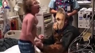 Cardiologist dressed as Chewbacca delivers heartwarming news to teen