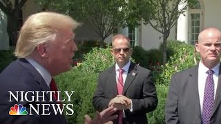 Download Trump's Denmark Remarks And Reversals On Background Checks, Tax Cuts | NBC Nightly News Video