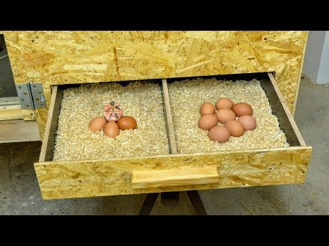 Kurník #2/3  Výroba / DIY Hen house #2/3 Building