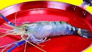 EXPERIMENT Glowing 1500 Degree PAN vs PRAWN FISH Cooking