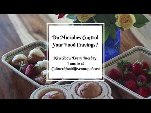 Podcast Episode 3: Do Microbes Control Your Food Cravings?