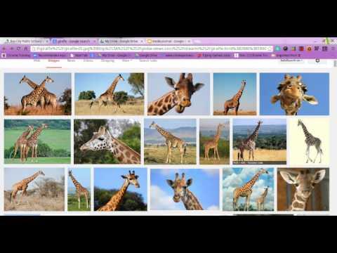 Citing Google Images.webm