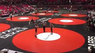 Wrestling- 2018 IL State Tournament wrestle-back