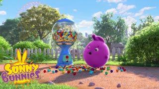 Cartoons for Children   SUNNY BUNNIES - How to Split an Orange   New Episode   Season 4   Cartoon