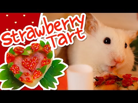 💘 Valentine's Strawberry Heart Tart | HAMSTER KITCHEN 💘