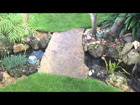 Springy's new pond and stream summer 2015