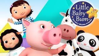 Where Is Mia?   Nursery Rhymes   Hide and Seek!   Original Song By LittleBabyBum!