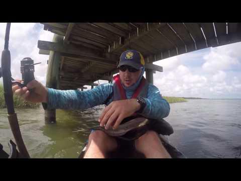 Bull Redfish (Charleston, SC)
