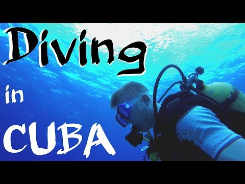 SCUBA DIVING WITHOUT CERTIFICATION