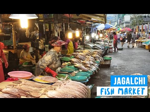 Fresh Fish Market in Busan, South Korea