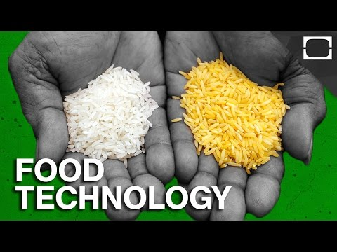 What Is The Future Of Food?