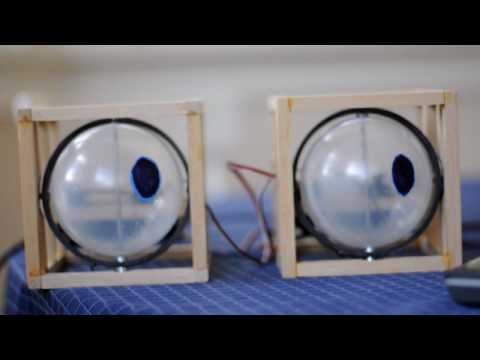 Animatronic Eyes Test