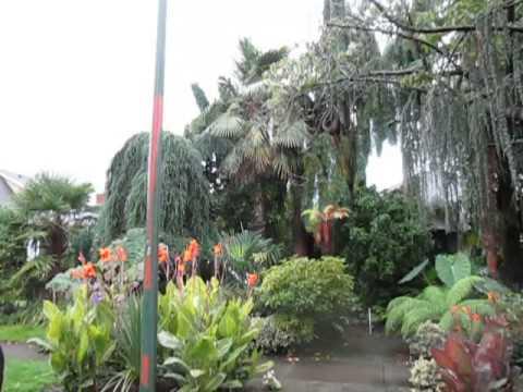 Amazing Subtropical Garden in Vancouver, Canada