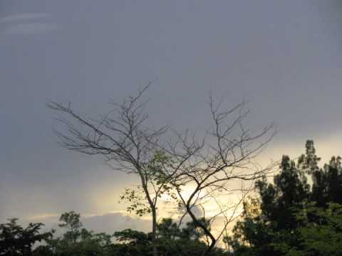 Spectrum Of The Sky :: Break Of Reality