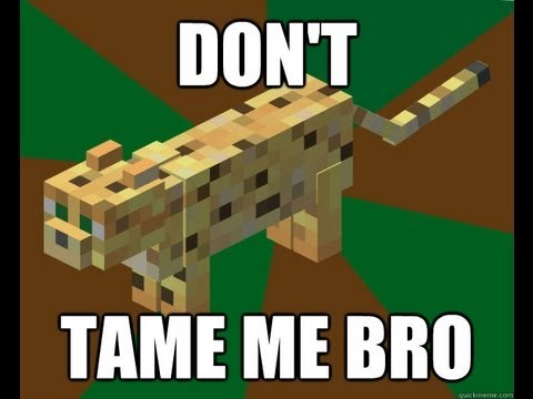 Minecraft 360 Tu12: How To Tame A Cat / Ocelot (Tips And Tricks)