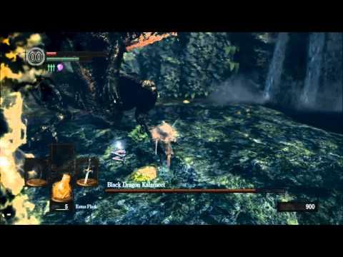 ENB Dark Souls Challenge - Wanderer - Black Dragon Kalameet