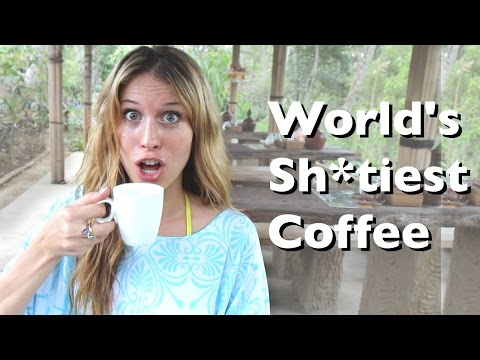 Coffee Made of Poop aka World's Most Expensive Coffee! - Bali, Indonesia | How 2 Travelers