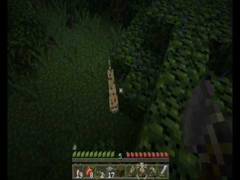 Faithy goes Minecraft: Jungle animals - baby ocelot