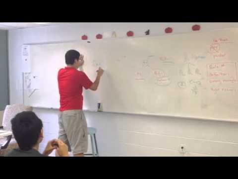 BA International Student Teaching Biology