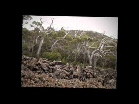 Drive to Mt Wellington, Hobart, Tasmania