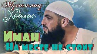 Download Иман на месте не стоит / Мухаммад Хоблос / напоминание братья и сестры Video