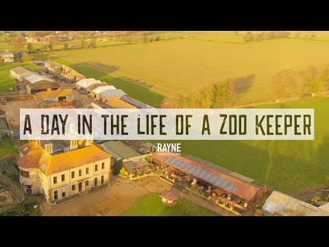 A Day In The Life of a Zoo Keeper