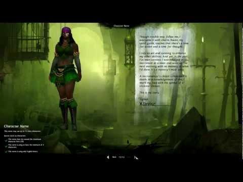 Guild Wars 2 Beta Gameplay GW2