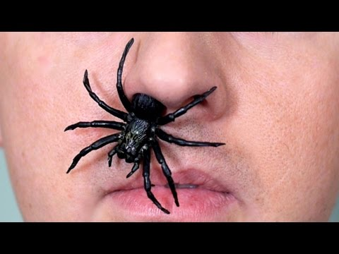 SPIDER IN NOSE!