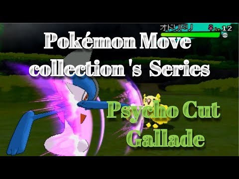 Pokémon Move collection 's  Series Psycho Cut Gallade(2006~2017)