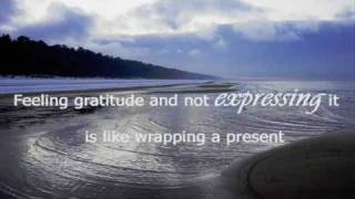 Words of Gratitude Quotes Video