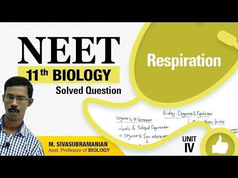 NEET 11th Biology || Respiration || Solved Multiple Choice Question || Unit-IV