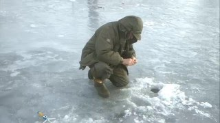 рыбалка кветунь