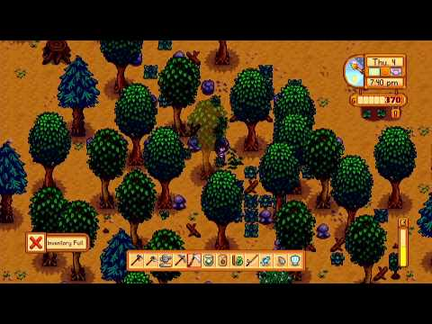 FINALLY! How to move the chest in Stardew Valley | Stardew Valley on Switch