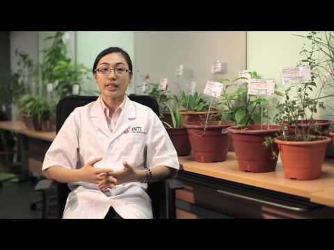 Traditional Chinese Medicine at INTI International University