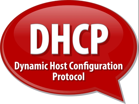Linux How to Release and Renew Your DHCP Lease