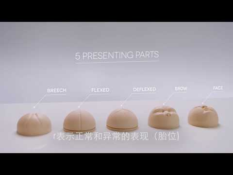 Cervical Dilatation and Effacement Module (Mandarin Subtitles)