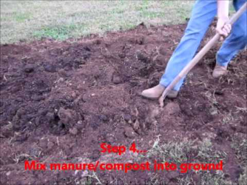How to plant Onions  ~short and simple~