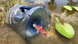MEGA FISH TRAP Catches Rare Colorful Fish