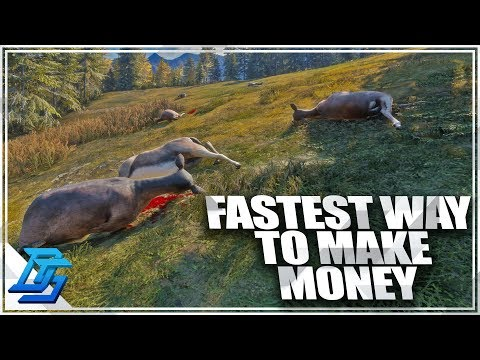 FASTEST WAY TO MAKE MONEY & LEVEL UP EVERYTHING - TheHunter : Call of the Wild