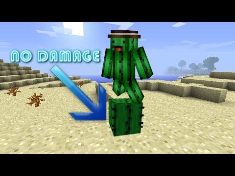 No damage on cactus glitch Minecraft