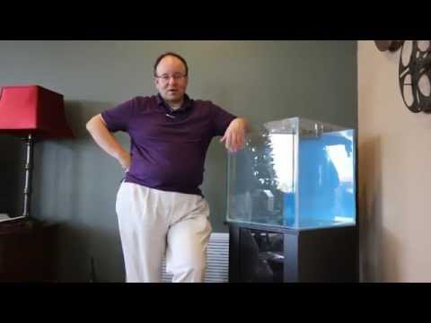 How to set up a Salt Water Aquarium by a Professional