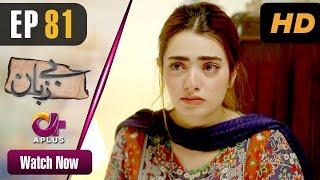 Pakistani Drama | Bezuban - Episode 81 | Aplus Dramas | Usama Khan, Nawal Saeed, Junaid, Mahlaqa